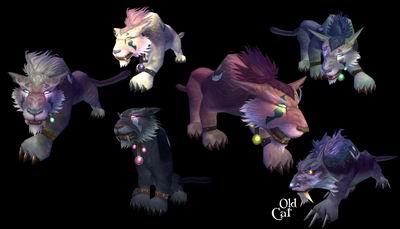 魔兽世界:德鲁伊动物形态新模型全完成